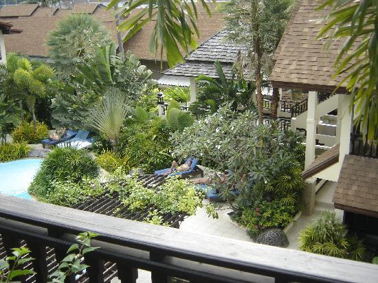 Phi Phi Banyan Villa: Eagle eye
