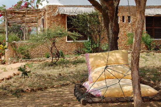 Mkoko House: Garden