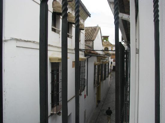 Hotel Gonzalez: View from balcony
