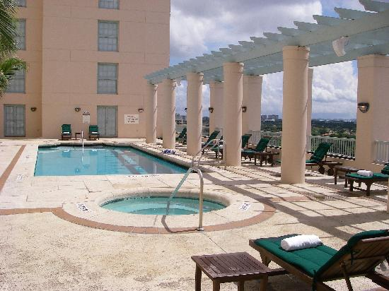 The Westin Colonnade Coral Gables: view of the pool 1