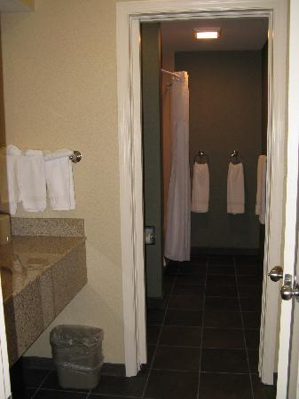 Clarion Inn & Suites: Bathroom suite