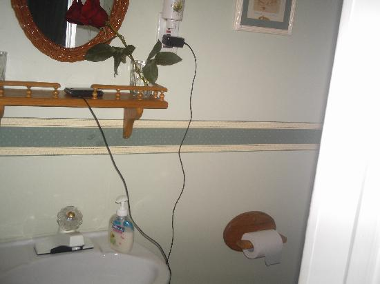 Strathaird Bed and Breakfast: Small shot of the bathroom showcasing the rose my boyfriend bought me