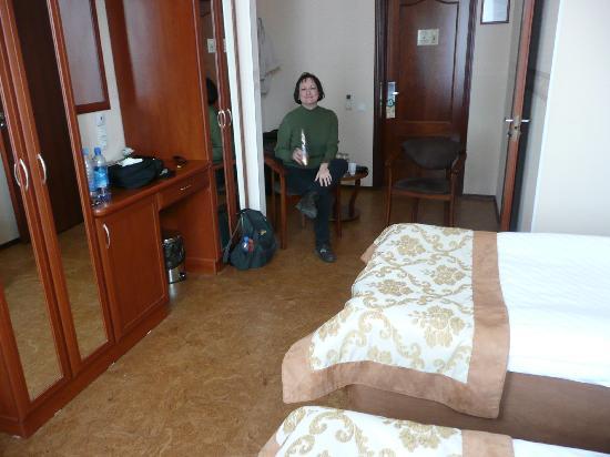 Pushka Inn Hotel: View of hotel room