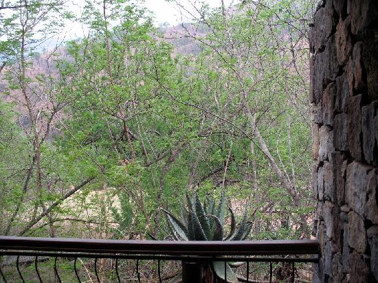 Heysbrook Country Lodge : View from Deck