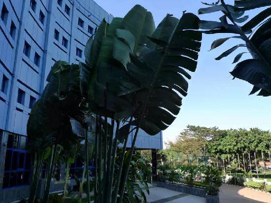 Imperial Resort Beach Hotel: メインビルディング