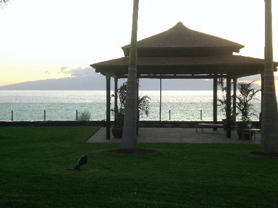 Gran Melia Palacio de Isora Resort & Spa: Vistas al mar y a La Gomera