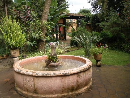 Casa Werma: Fountain