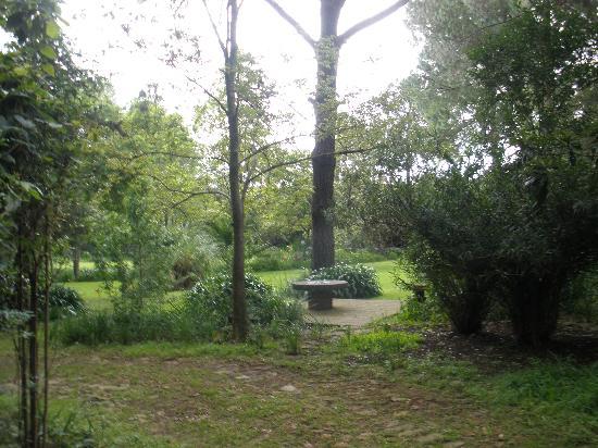 Casa Werma: Gardens