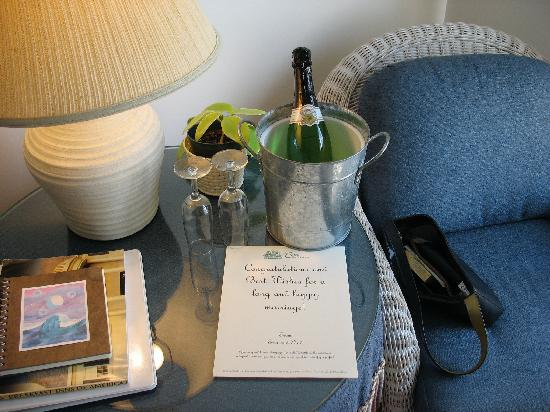 The Cove Bed and Breakfast: Bottle of Champaigne waiting for us when we arrived.