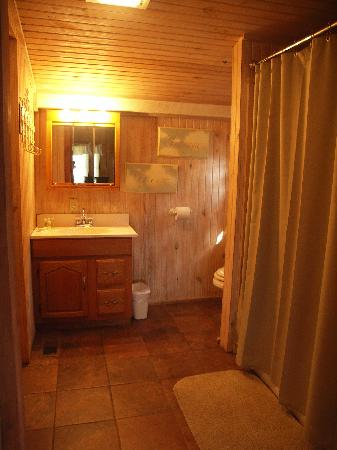 Chalets in Hocking Hills: Bathroom at The Settler cabin