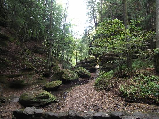 Chalets in Hocking Hills: Along Old Man's Cave 'Gorge' trail
