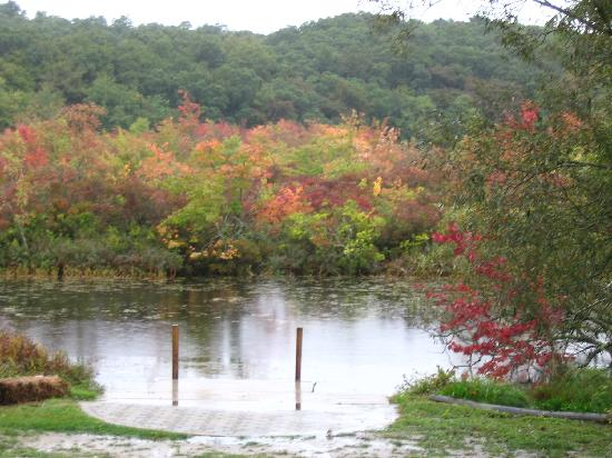 Green Briar Nature Center and Jam Kitchen: Autumn view of the nature center