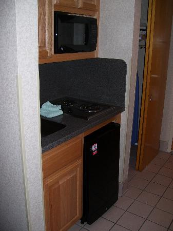 Comfort Inn Newport News/Williamsburg East: Microwave, mini-fridge, and two-burner stove.