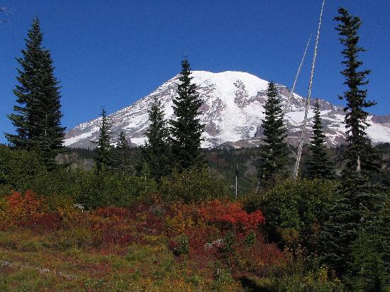 Snow Lake Trail: Mt. Rainier from Bench Lake