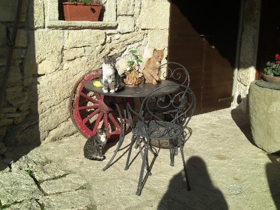 Acquasanta Terme, Italien: gli ospiti del castello