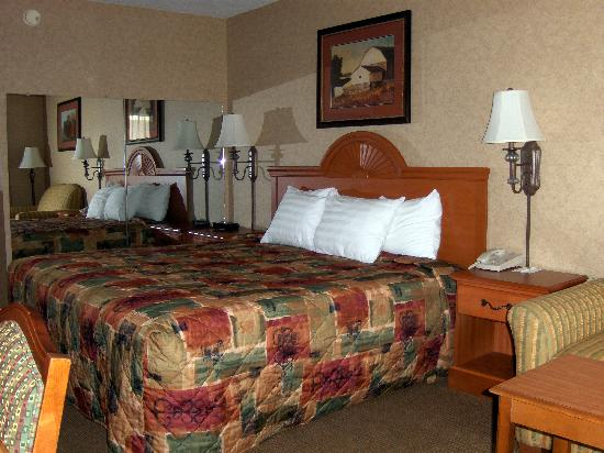 Best Western Inn: Room interior