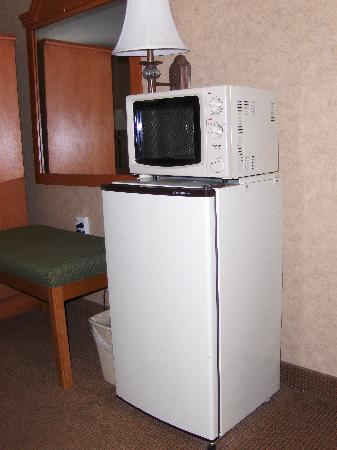 Best Western Inn: Micro-fridge was fantastic