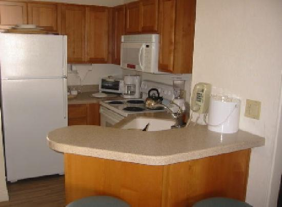Laguna Surf : Full kitchen - perfect size for 4 guests