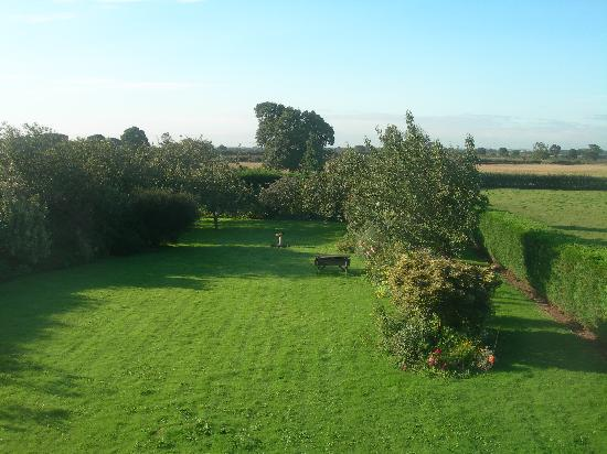 Wood Farm Bed and Breakfast: View from bedroom
