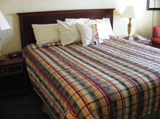 Red Lion Hotel Yakima Center: comfortable king-sized bed with multiple pillows!