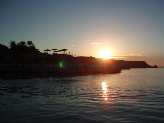 Oonas Dive Club Hotel: sunrise naama bay
