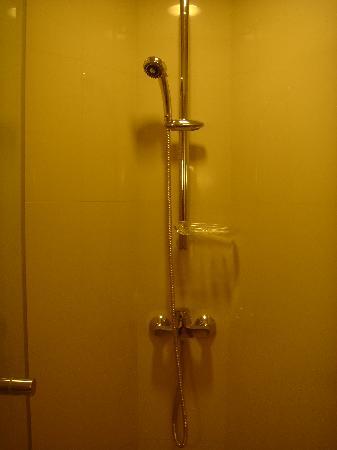 ไอบิส กรุงเทพฯ สาทร: Shower