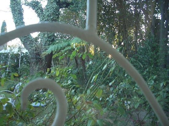 Parkmore Lodge: 部屋の窓から朝日がさしこんでくる