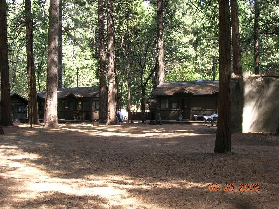 Tent village picture of half dome village yosemite for Curry village cabins yosemite