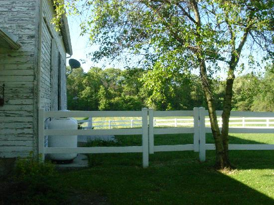 Sun and Cricket Bed and Breakfast: Entrance area to carriage house