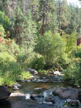 Jemez Mountain Inn: stream on the way to another hot springs