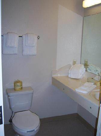 Extended Stay America - Louisville - Dutchman: bathroom