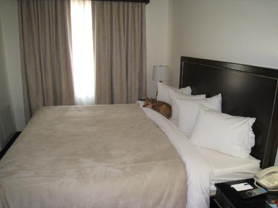 Photo of Hotel Extended Studio Victorville