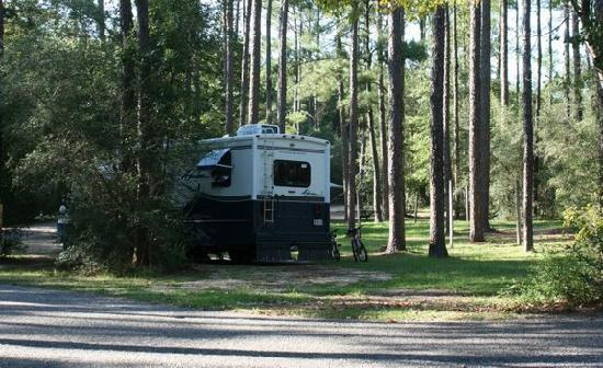 Falling Waters State Park: Our campsite #19