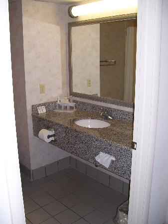 Holiday Inn Express & Suites Richmond - Brandermill - Hull St: Sink area inside large bathroom