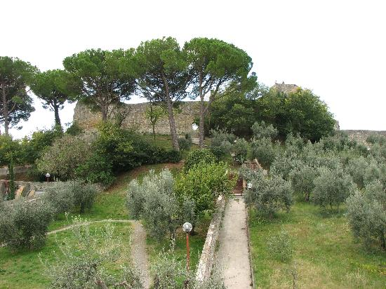 Locanda La Mandragola: the view from the balcony 1