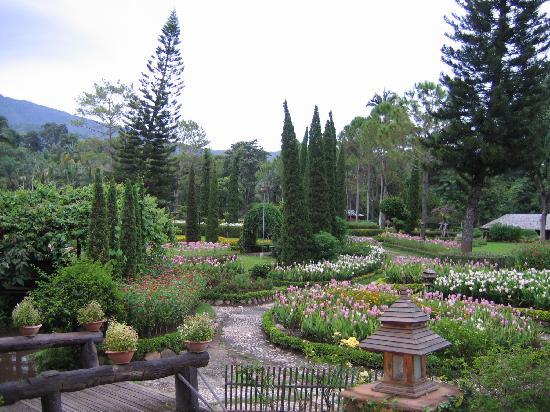Krisdadoi Chiang Mai: The garden is beautiful