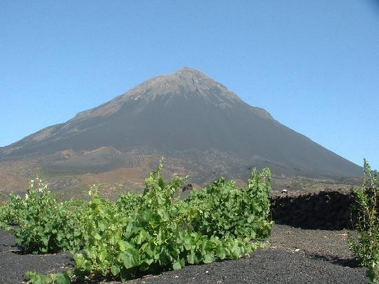 Fogo, Cape Verde: vista del vulcano con la vite