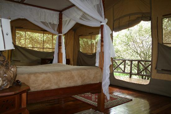 Mara Leisure Camp : Tents viewing the river