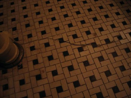 Lafayette House: Dirty and cracked bathroom floor tile