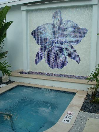 Orchid Key Inn : Jacuzzi and waterfall