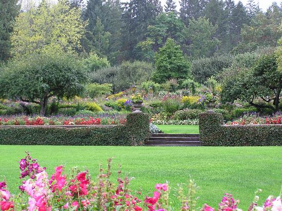 Butchart Gardens: The Lawn