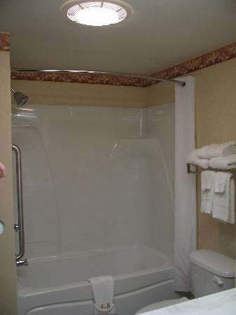 Best Western Danville Inn : shower
