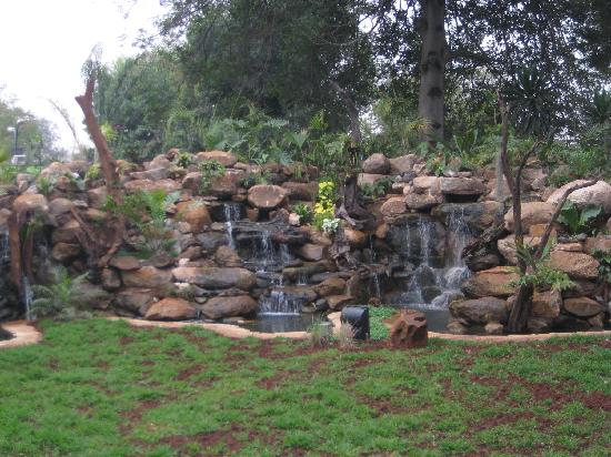 Fairview Hotel: New landscaping/waterfall