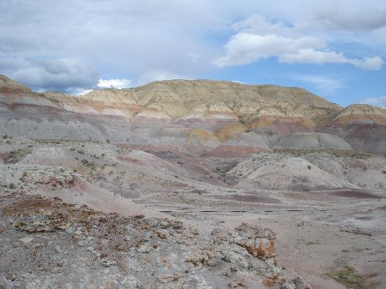 Red Canyon Wild Mustang Tour: Wyoming vista1