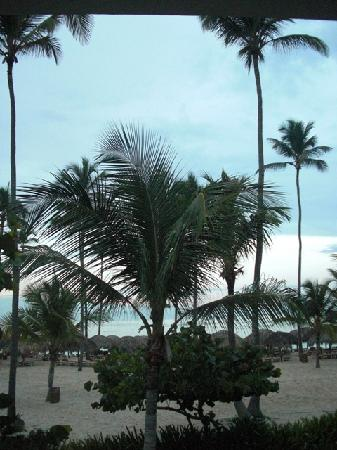 Iberostar Bavaro Suites: View from our room