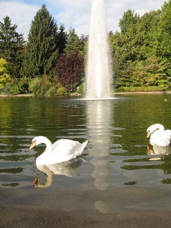 Jugendgästehaus: The pond at Lakeside Park - Klagenfurt