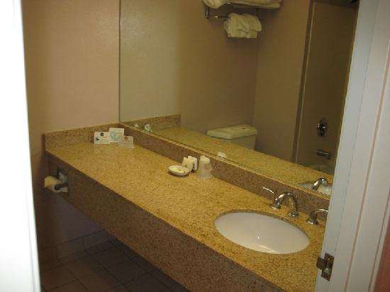BEST WESTERN PLUS Grant Creek Inn: Bathroom