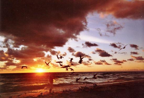 Sunny Isles Beach, Φλόριντα: Lever du soleil au rendez-vous tous les matins