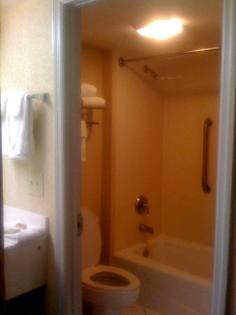 Regency Inn & Suites: Bathroom
