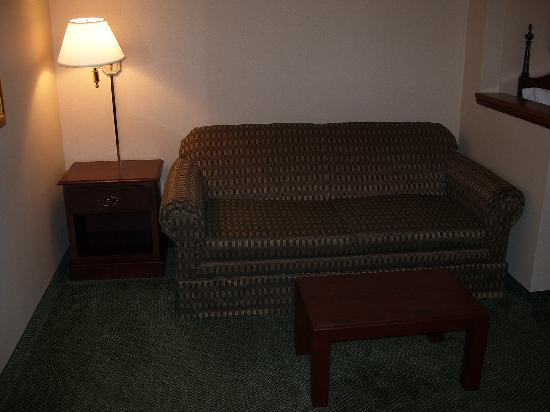 Auburn Place Hotels and Suites: Sofabed with small table